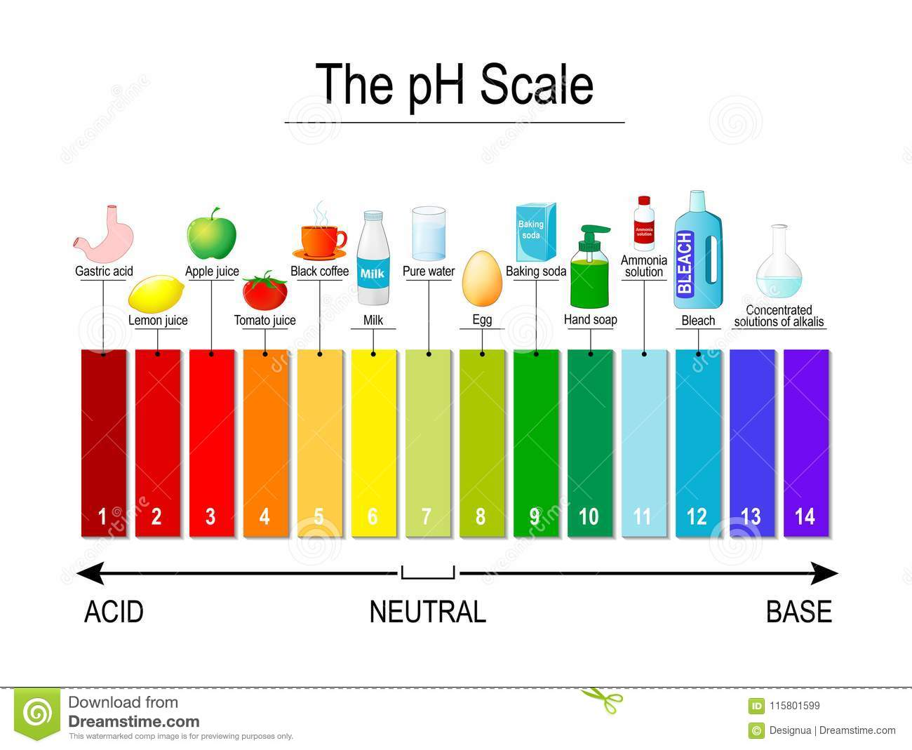 hight resolution of test strips use for track and monitor ph for alkaline and acid levels color vector diagram for educational medical science use