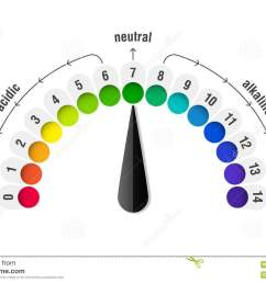 ph value scale meter for acid and alkaline solutions acid base balance infographic [ 1300 x 957 Pixel ]
