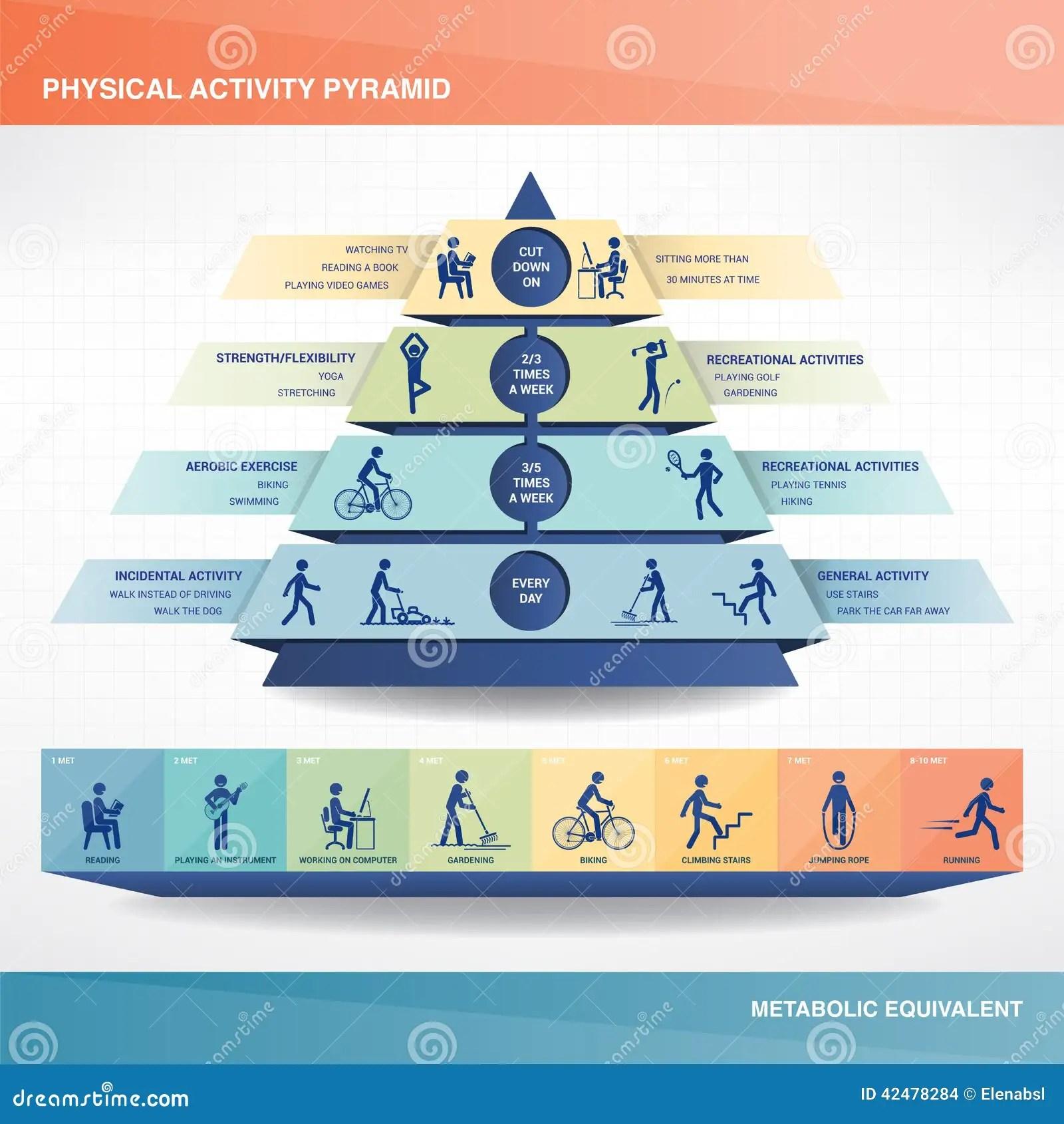 Physical Activity Pyramid Stock Vector