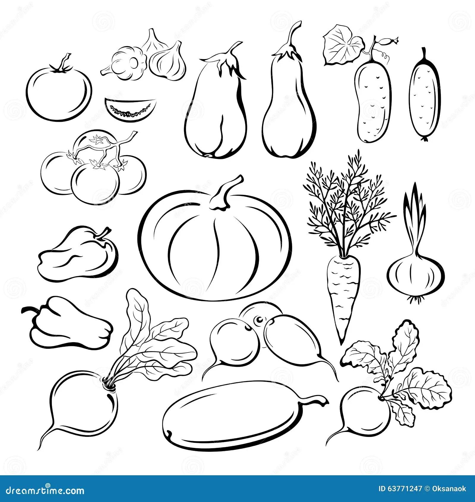 Pictogrammes D Ensemble De Legumes Regles Illustration De