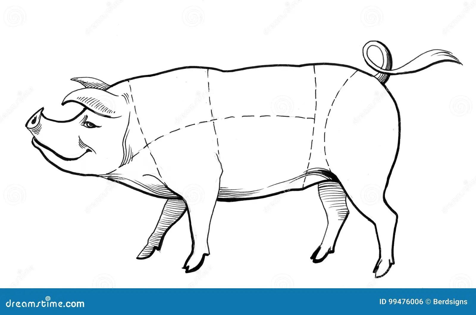 Pig Chart Stock Illustration Illustration Of Illustration