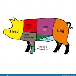 Pig Cuts Diagram 2002 Wrx Wiring Cutting Chart Stock Vector Illustration Of Lard