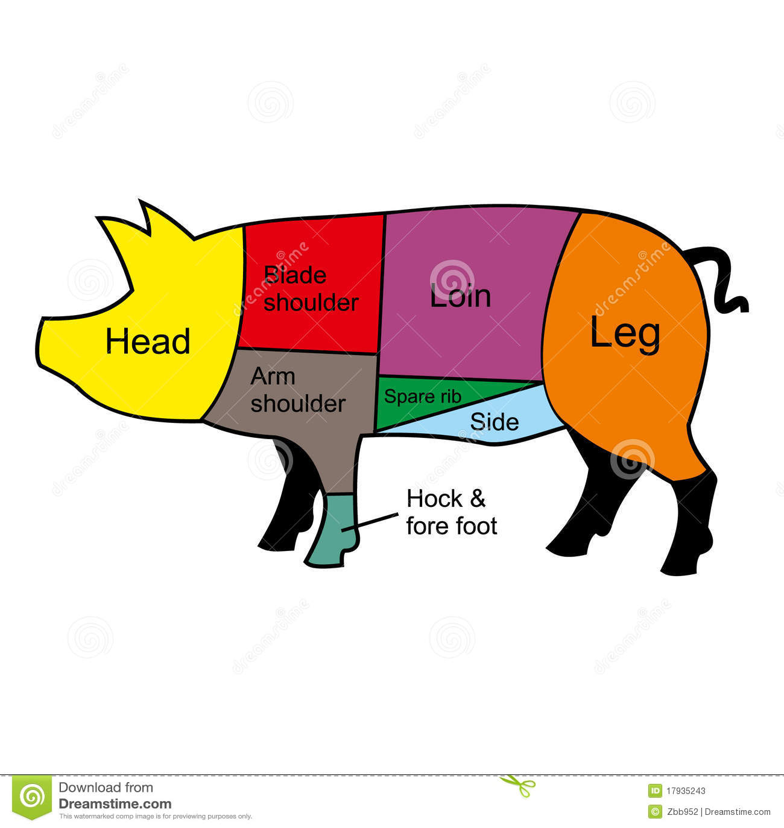 hight resolution of pig cutting chart