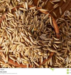 pile of unpeeled oat grains on wooden background top view close up macro selective focus shallow depth of field some copy space dietary food  [ 1300 x 957 Pixel ]