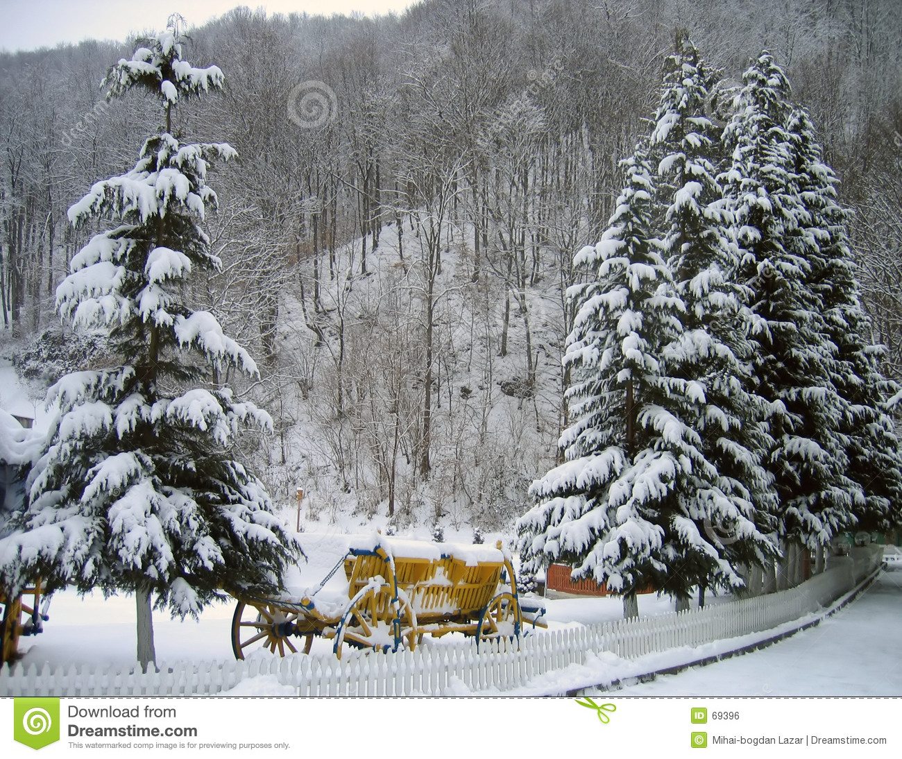 7 pines resort reading panel wiring diagrams pine trees in winter stock photo. image of trees, - 69396