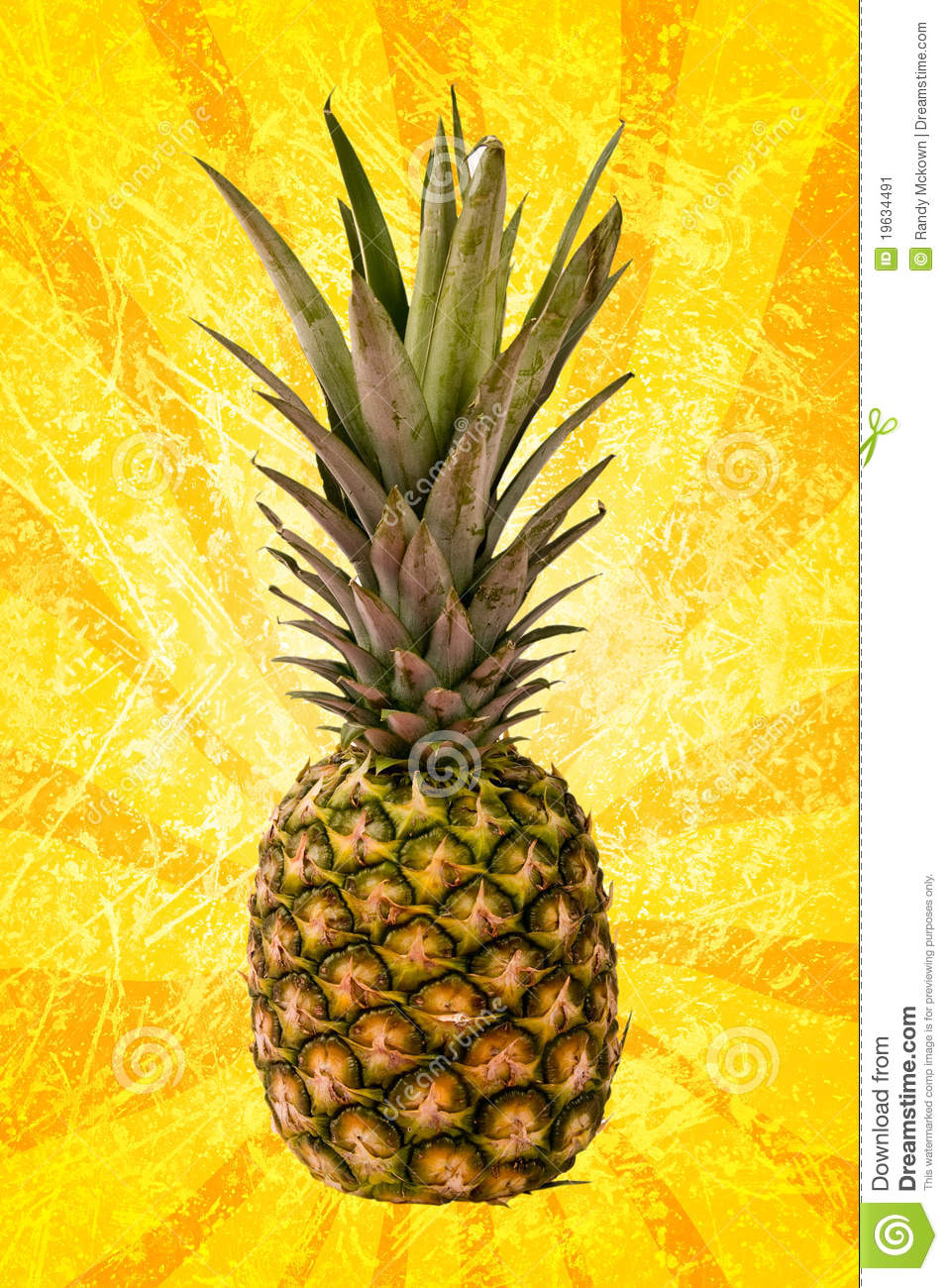Boy And Girl Car Wallpaper Pineapple On Yellow Spiral Stock Image Image 19634491