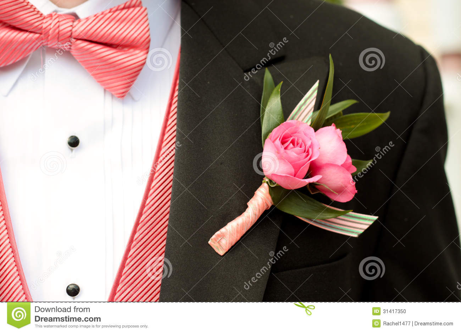 Pink And Black Tuxedo Stock Photo