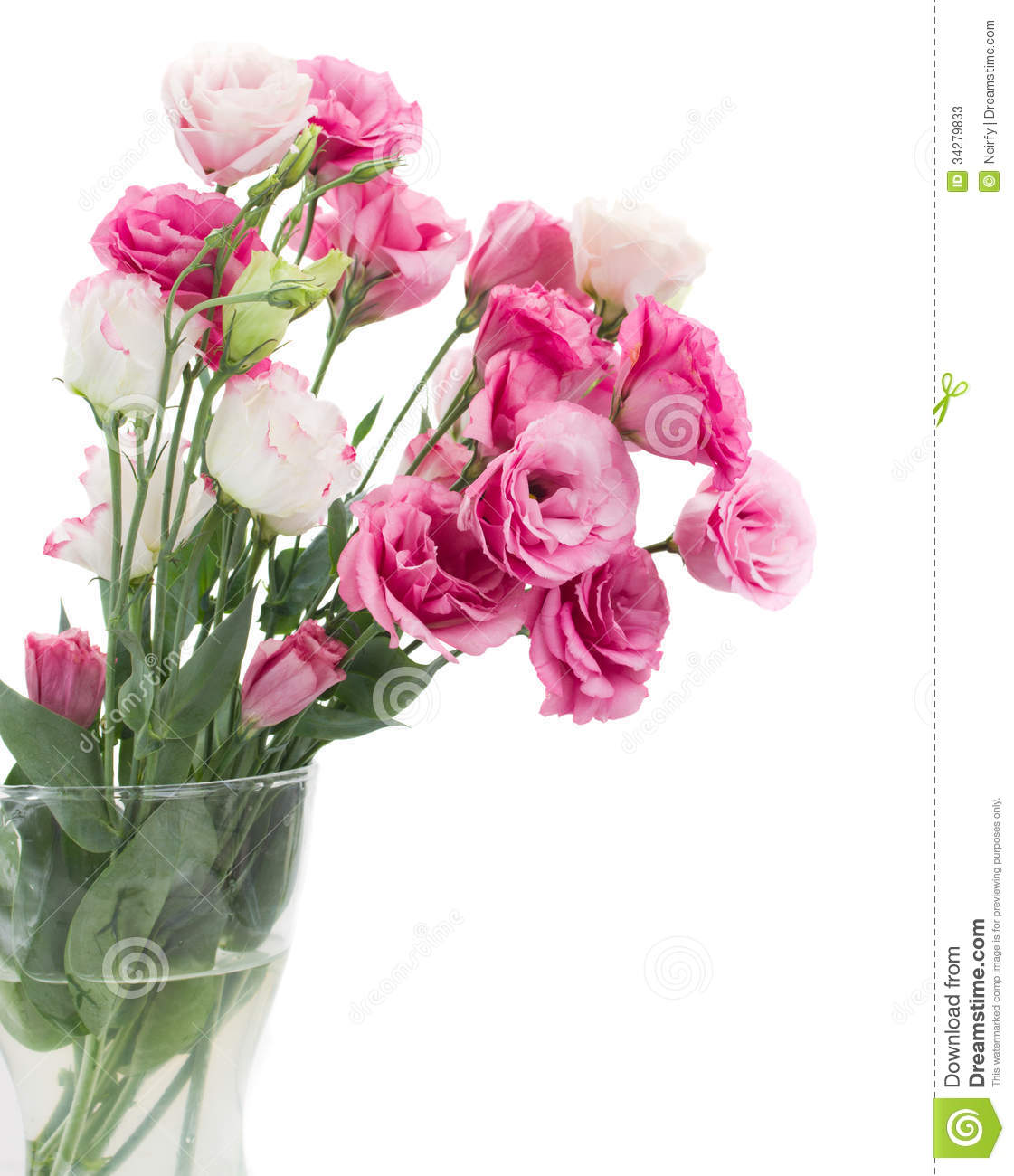 Pink Eustoma Flowers In Vase Stock Photos  Image 34279833