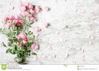 Rustic Flower Background | www.pixshark.com - Images ...