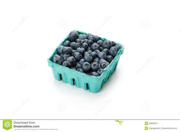 Pint Container Of Blueberries On White Royalty Free Stock