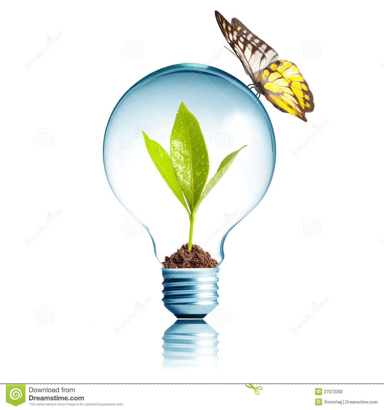 Plant Inside Light Bulb With Butterfly Stock Illustration