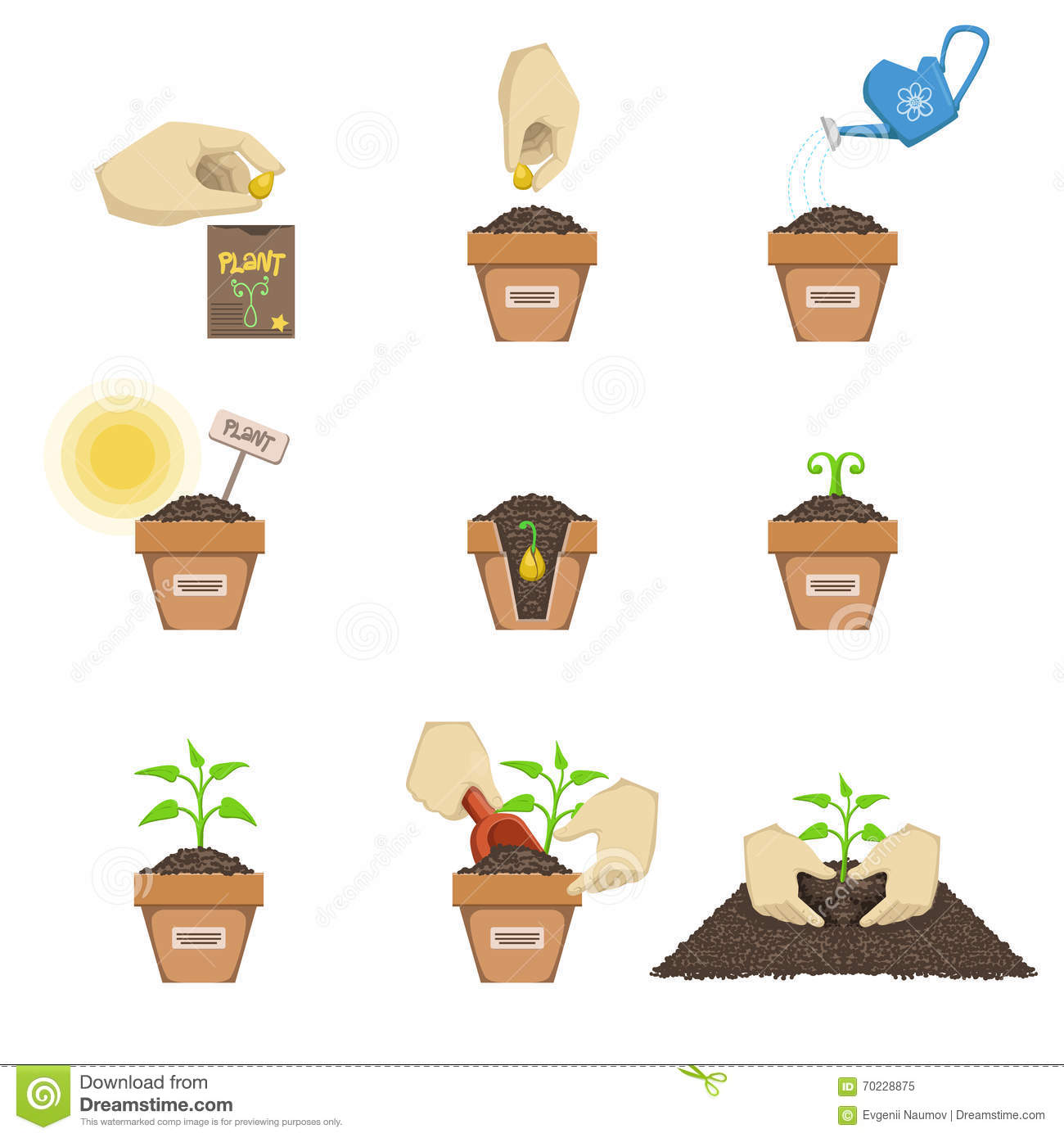 Planting The Seed Sequence Cartoon Vector