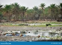 Plastic Waste. Yemen Socotra Island Stock