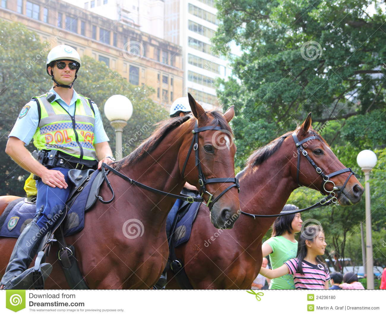 Police horses mounted editorial image Image of domestic