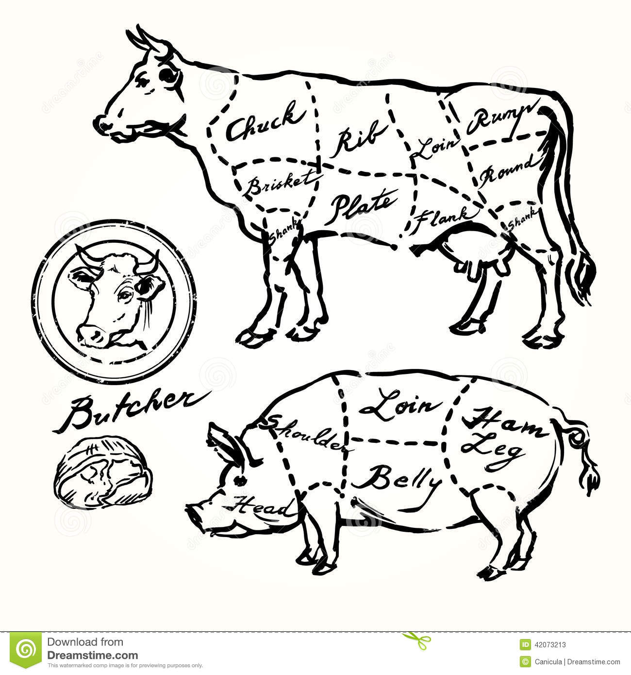 Pork And Beef Cuts Stock Vector Illustration Of Cuisine