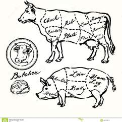Cow Meat Diagram Bmw Mini Cooper Wiring Pork And Beef Cuts Stock Vector - Image: 42073213