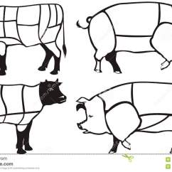 Beef Meat Diagram 2016 Jeep Jk Subwoofer Wiring Pork & Diagrams Royalty Free Stock Photography - Image: 18746257