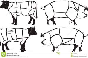 Pork & Beef Diagrams Royalty Free Stock Photography  Image: 18746257