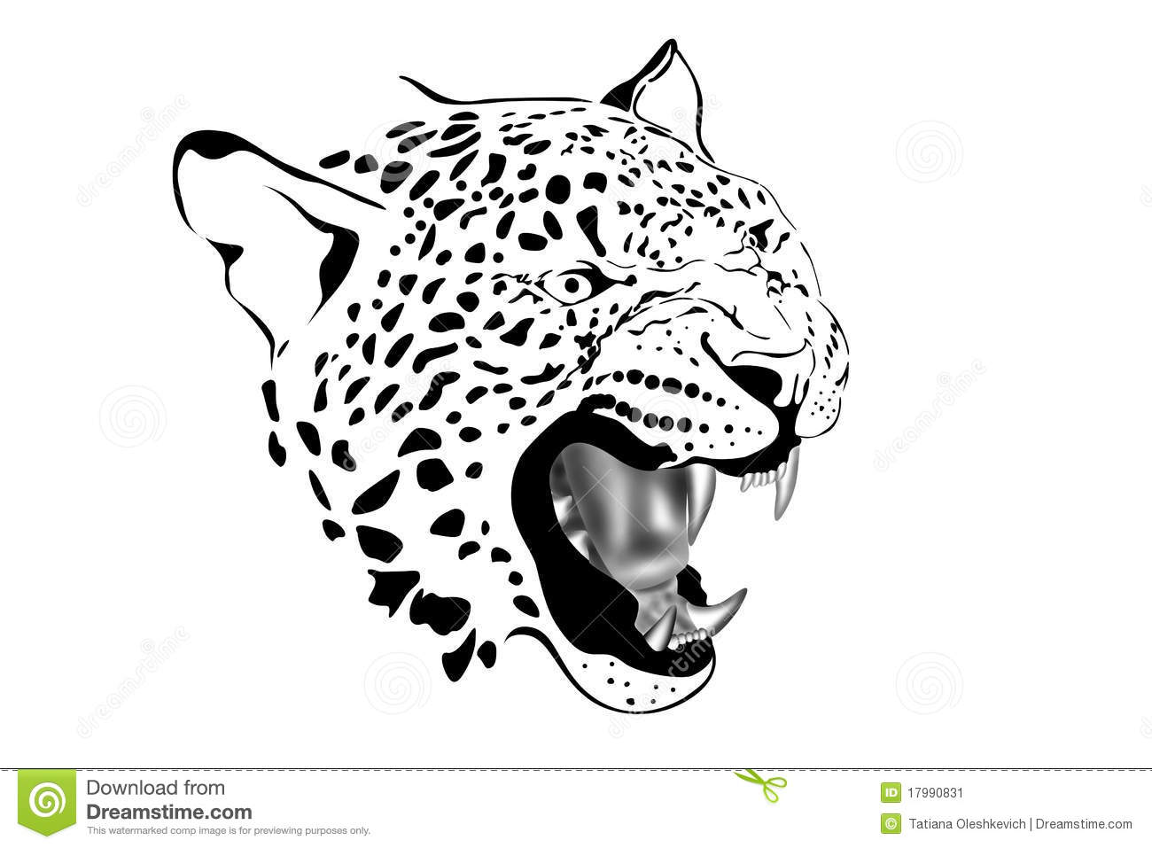 Portrait Of Leopard In Black And White Stock Image