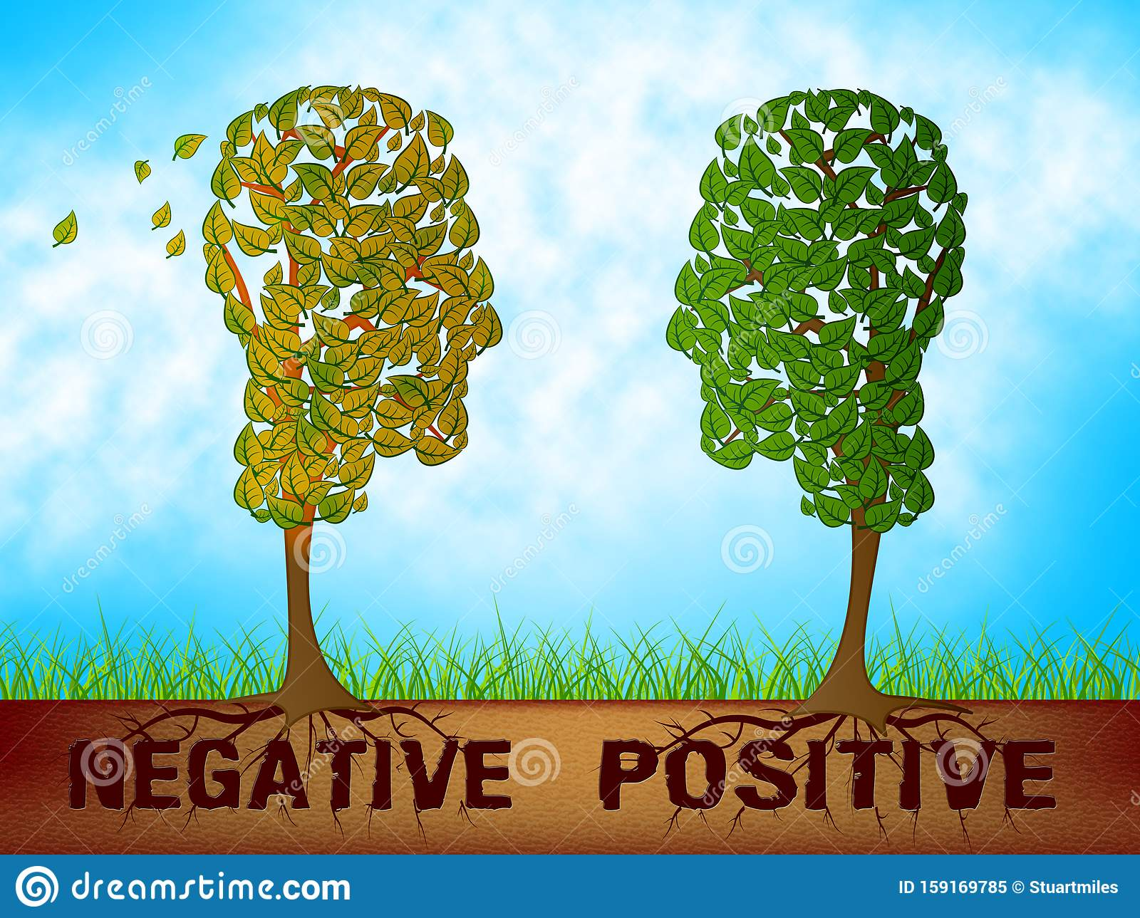 Positive Versus Negative Words Depicting Reflective State