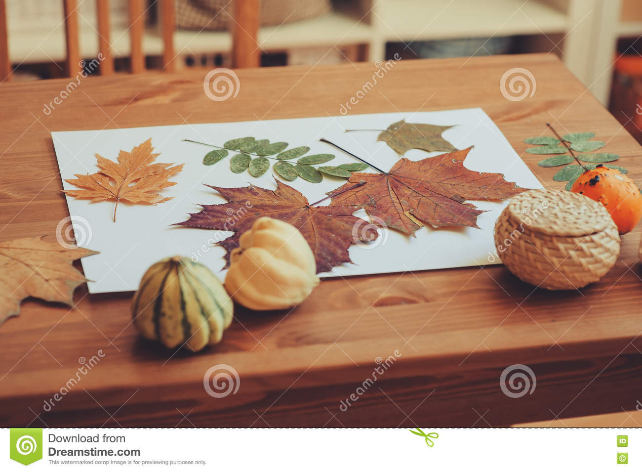 preparations for autumn craft