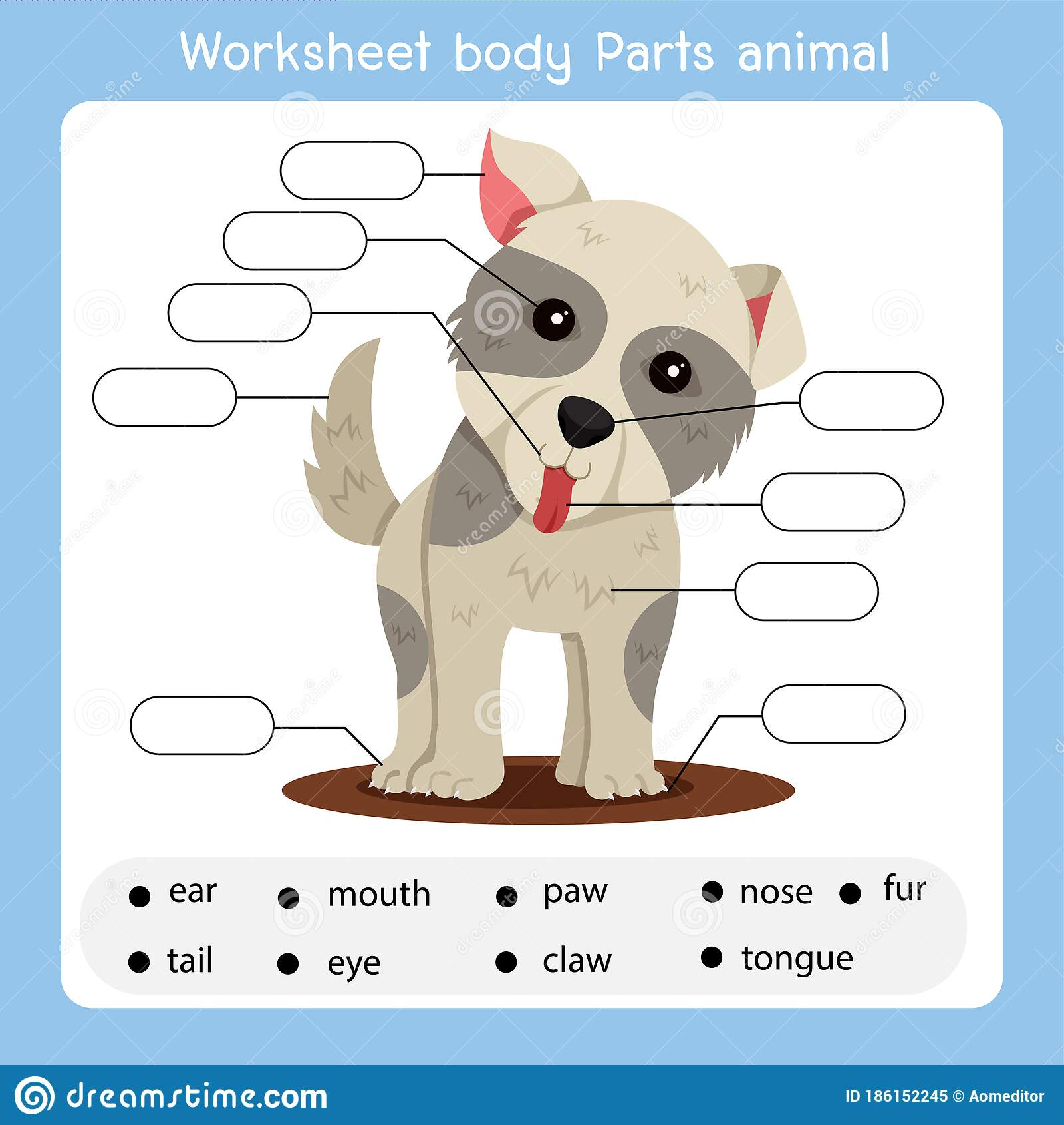 Illustrator Of Worksheet Body Parts Dog Animal Stock