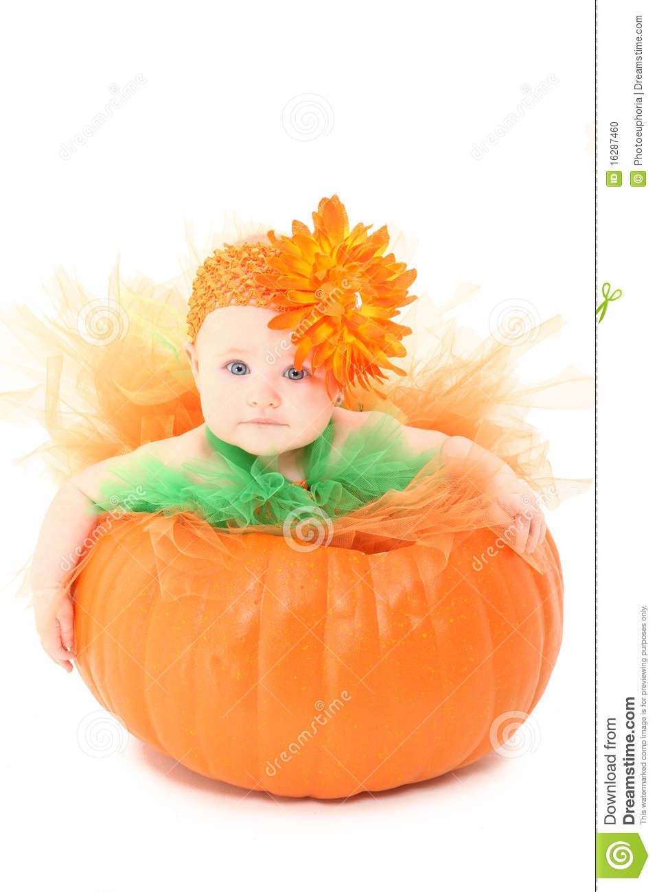Pumpkin Baby stock photo Image of infant cute dress