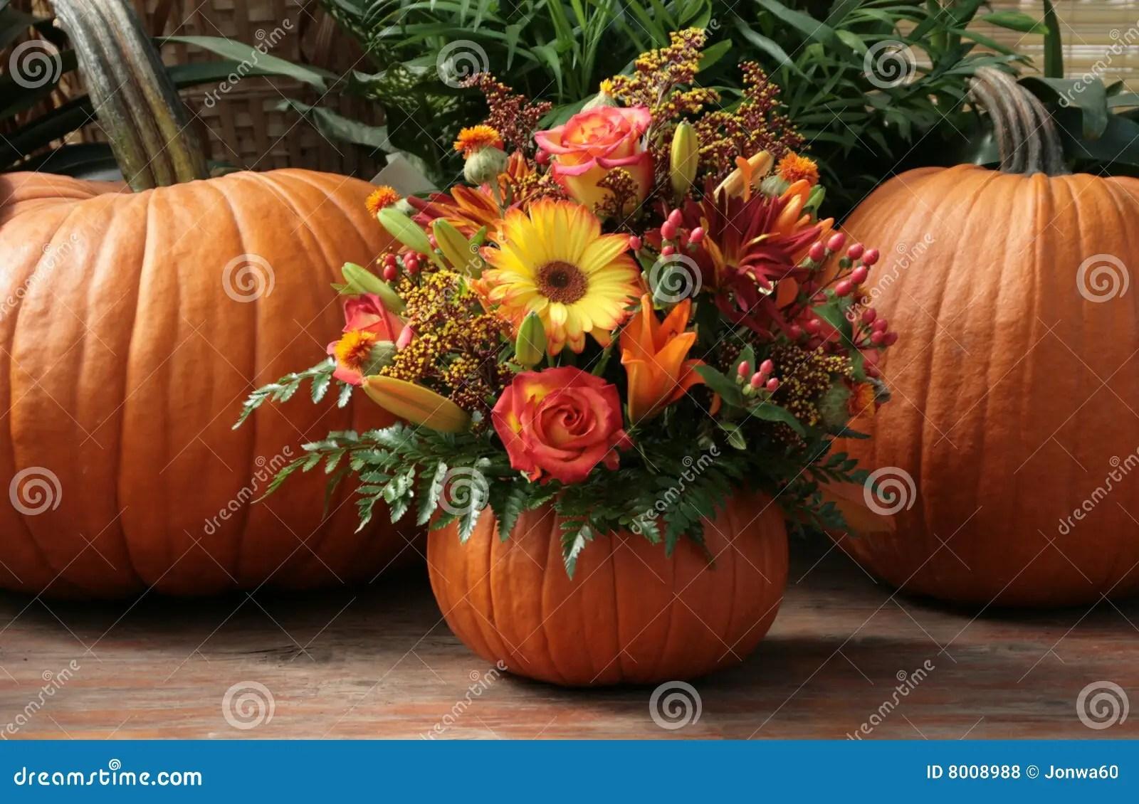 Pumpkin Floral Royalty Free Stock Photos  Image 8008988