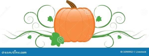 pumpkin & vines stock