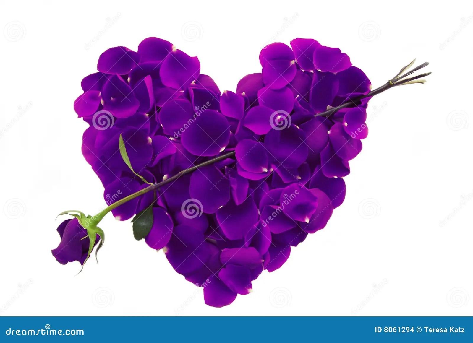 purple rose petal heart