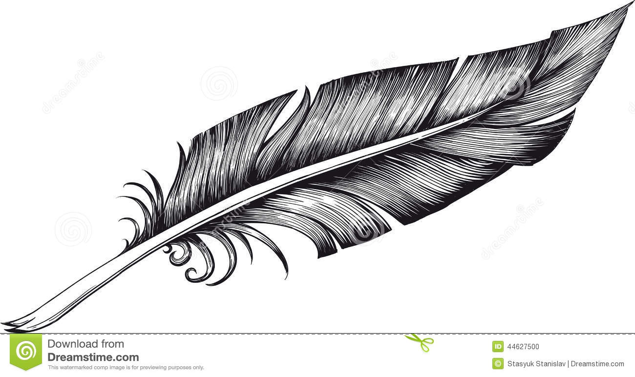 Quill Pen Stock Vector Illustration Of Feather