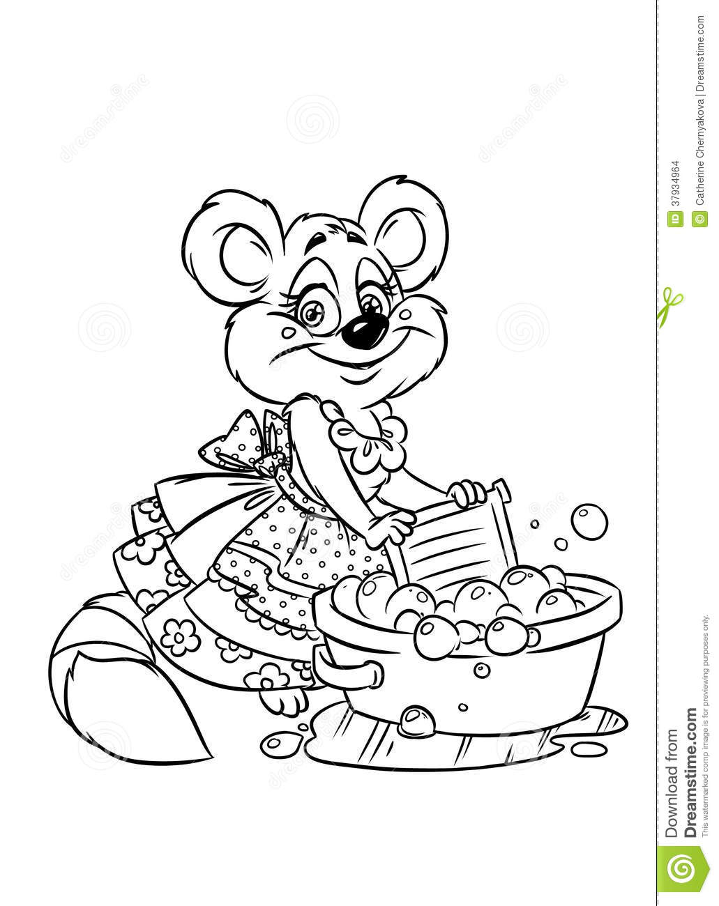 Raccoon Hostess Erases Coloring Pages Stock Images