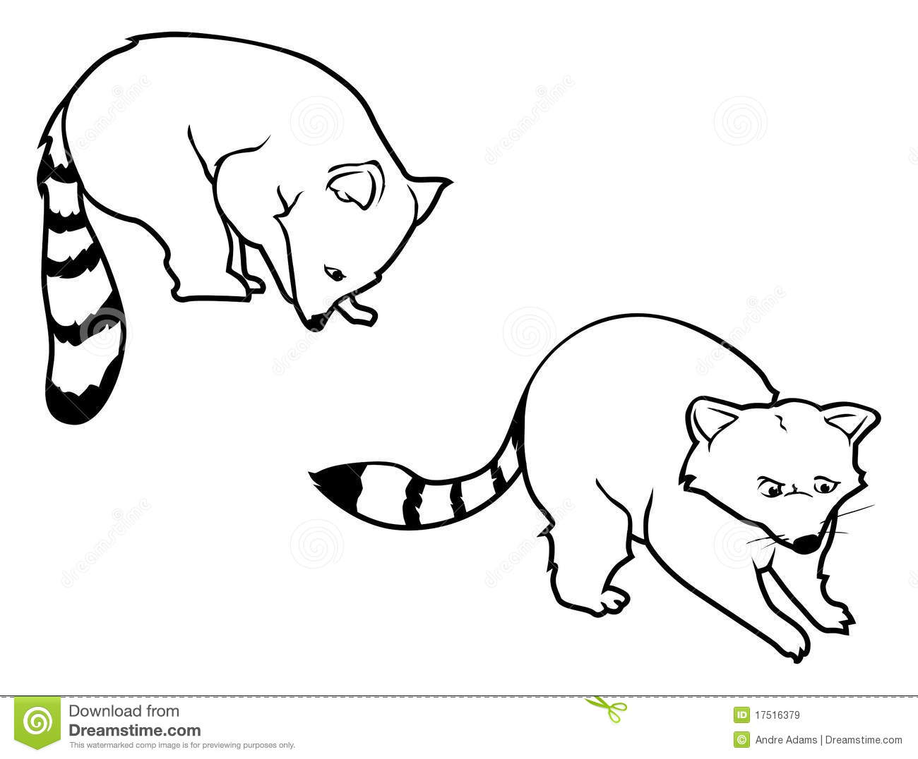 Raccoon Outlines Stock Vector Illustration Of Critter