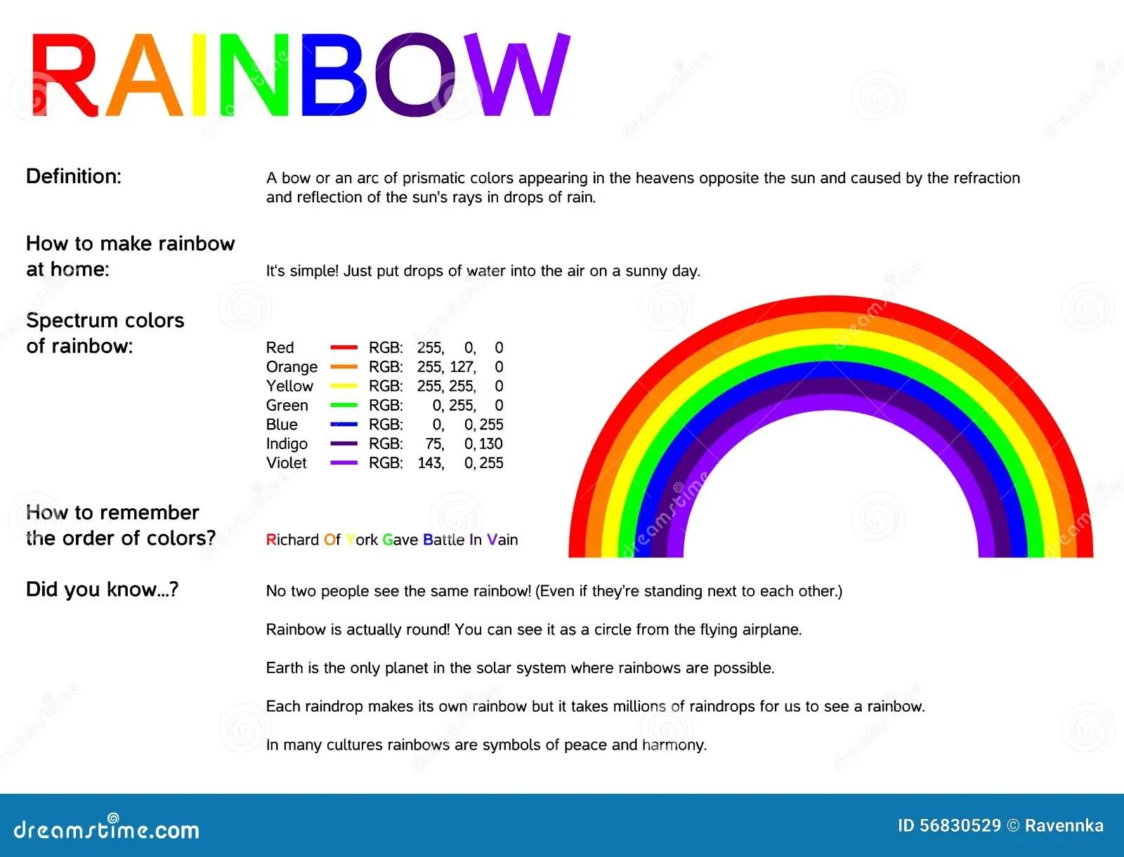 Rainbow Infographic Stock Vector Illustration Of