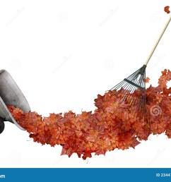 raking leaves [ 1300 x 965 Pixel ]