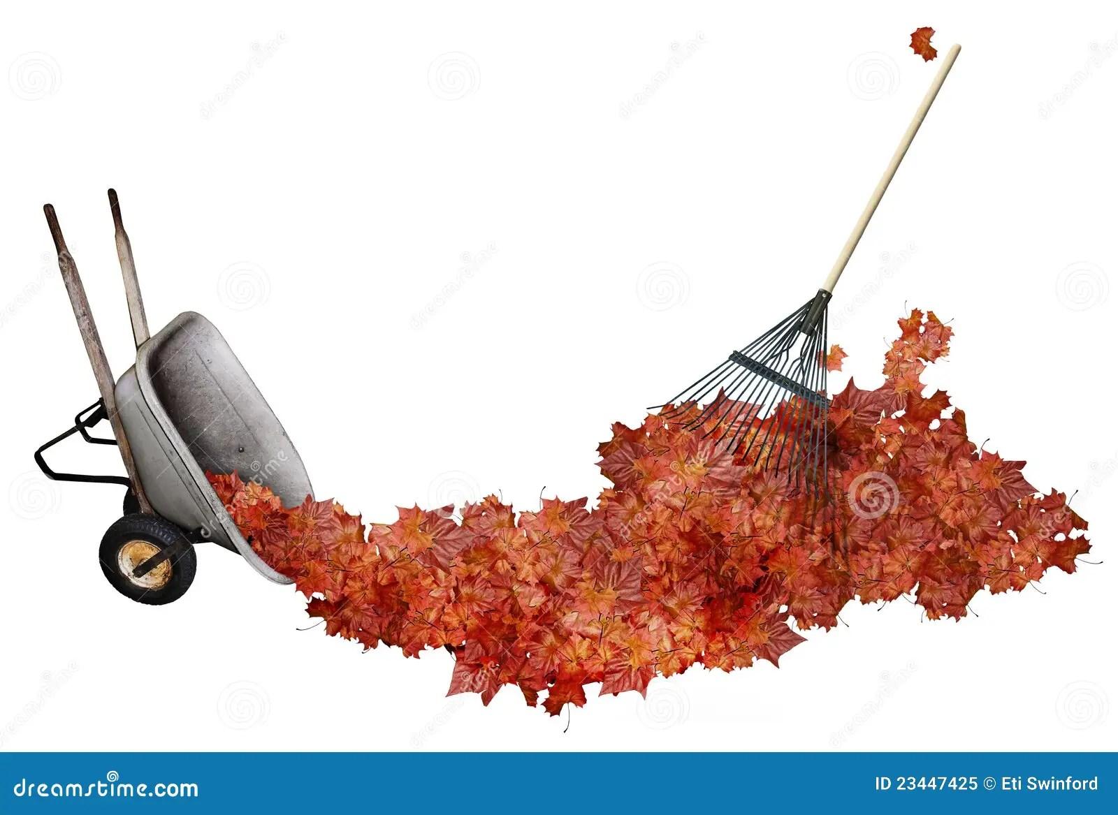 hight resolution of raking leaves