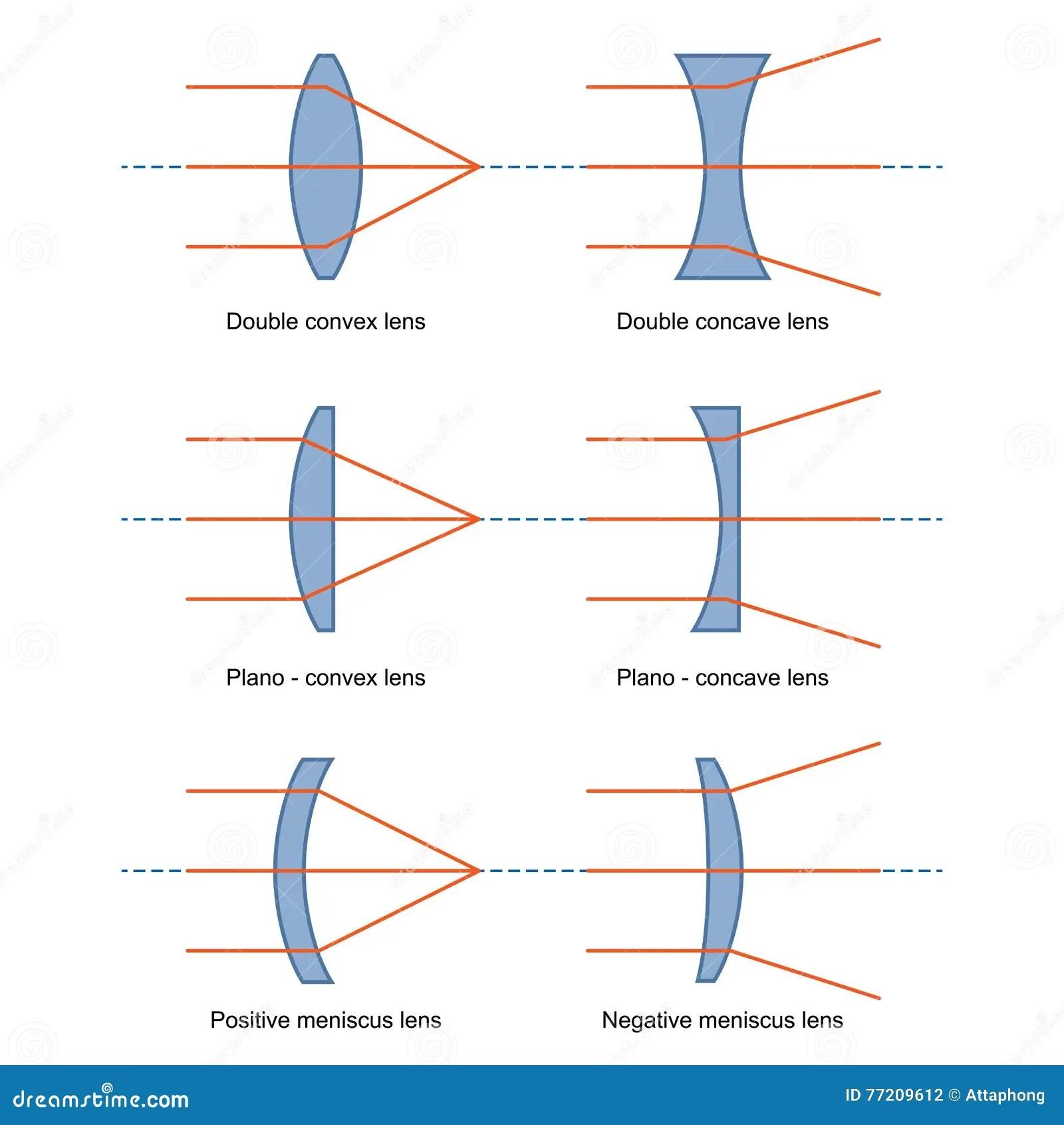 Ray Diagrams Voor Lenzenvector Vector Illustratie