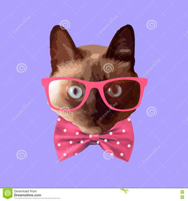 1348d62eb3 20+ Cat With Glasses And Bow Tie Pictures and Ideas on Meta Networks