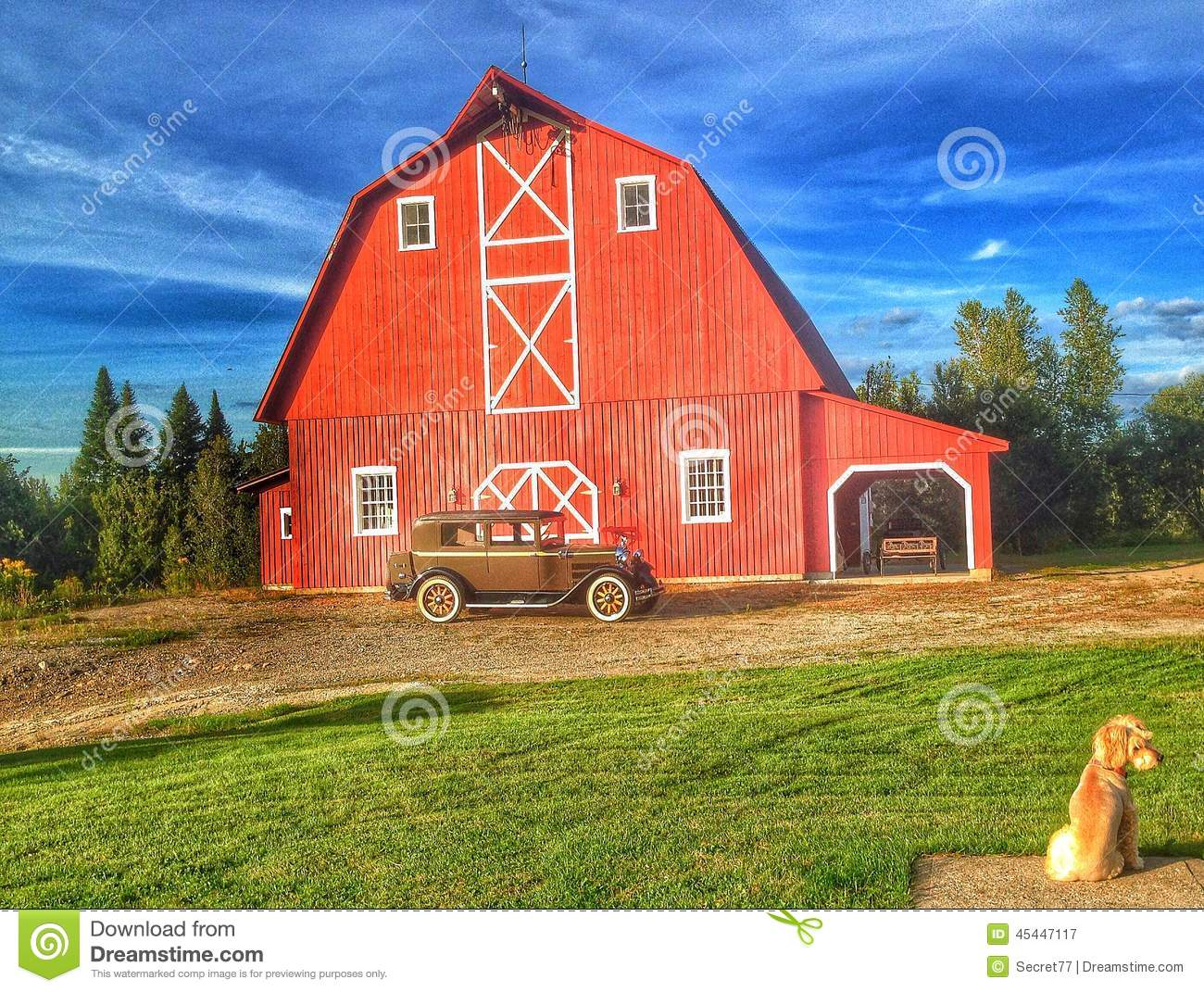Red Barn With Dog Stock Photo  Image 45447117