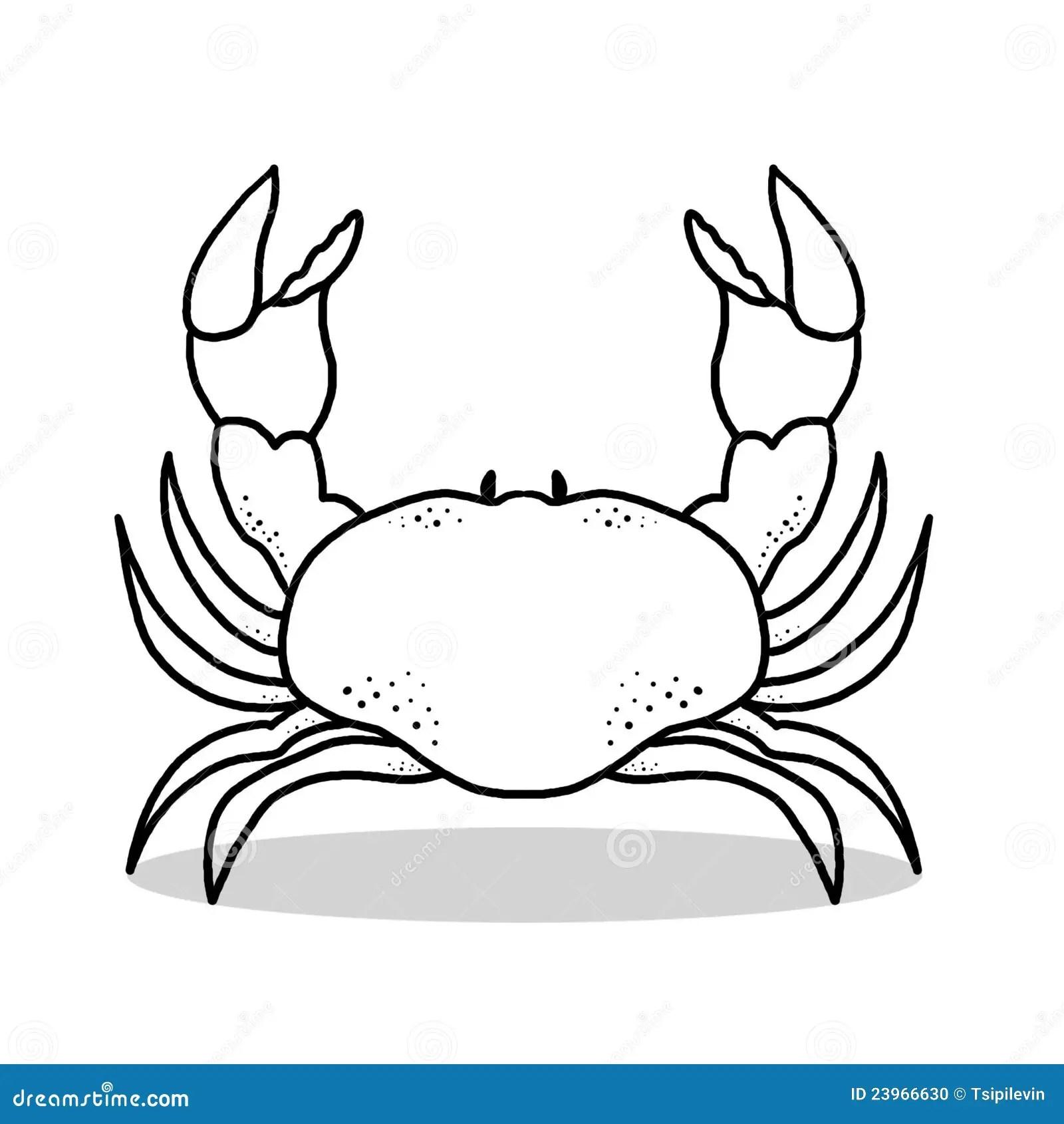 Crab Outline Illustration Stock Illustration Illustration