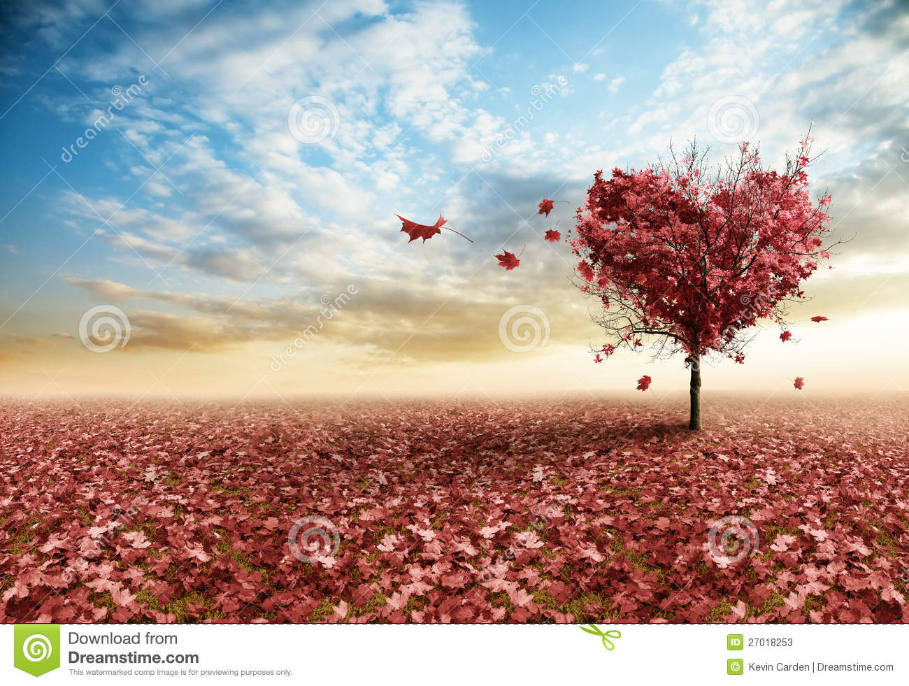Fall Floiage Wallpaper Red Heart Tree Stock Image Image Of Grow Outdoor Maple