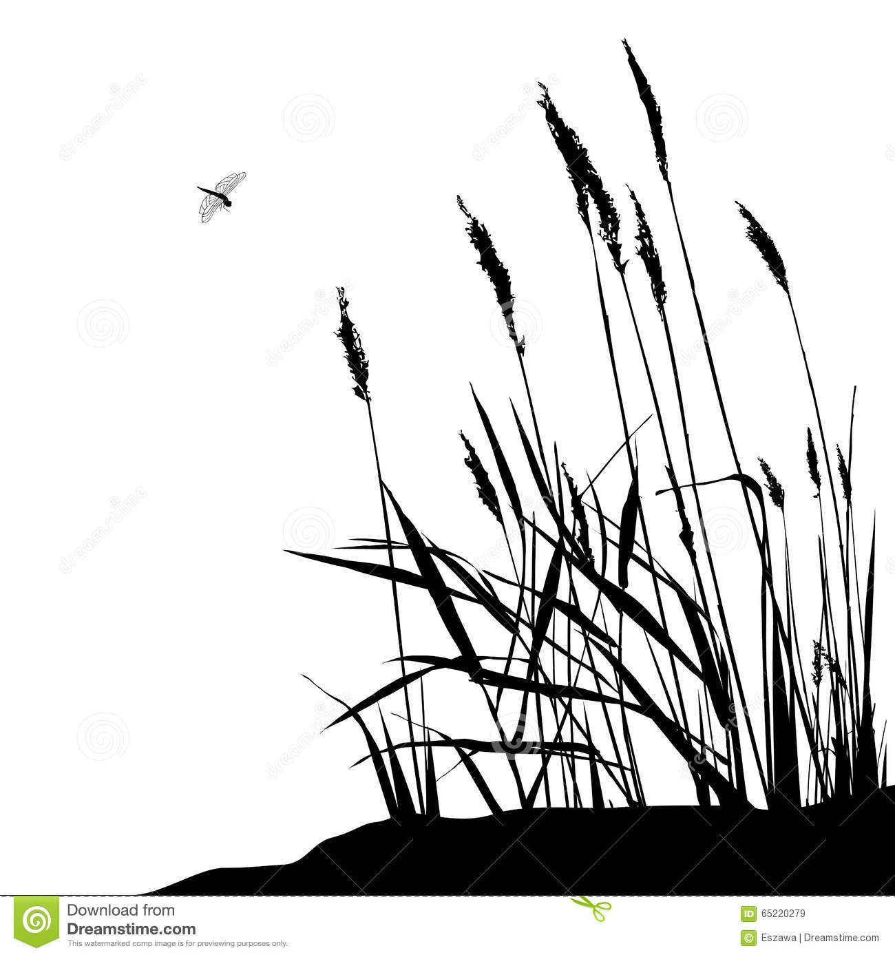Reed And Flying Dragonfly