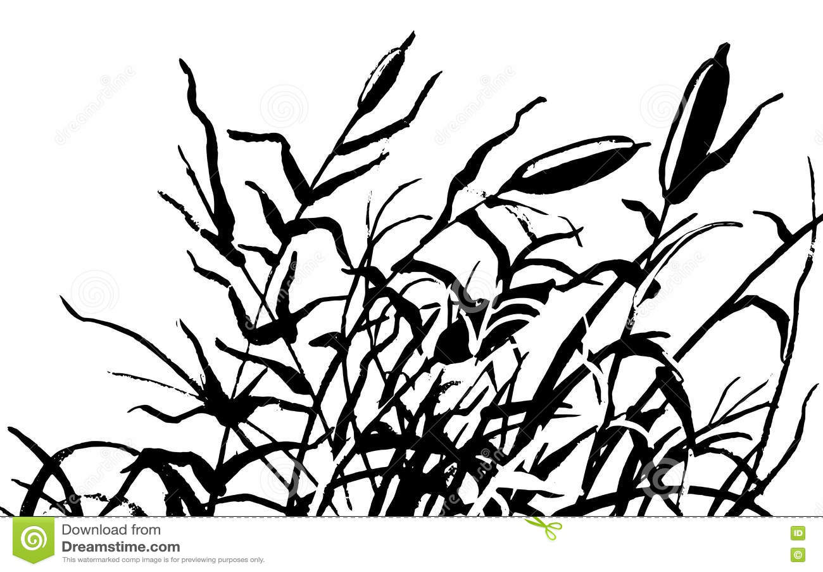 Reed Vector Illustration Cartoon Vector