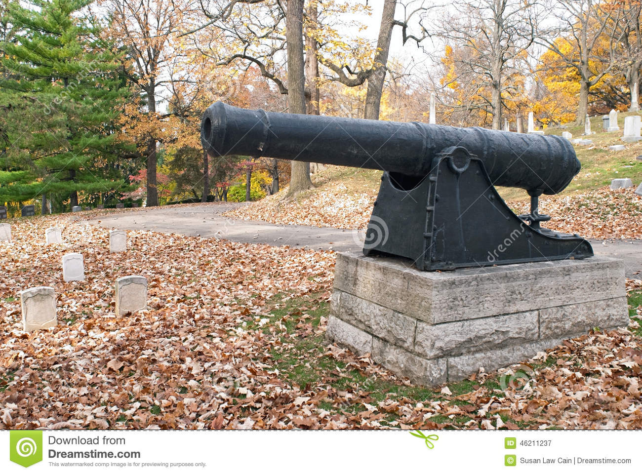 revolutionary war cannon in