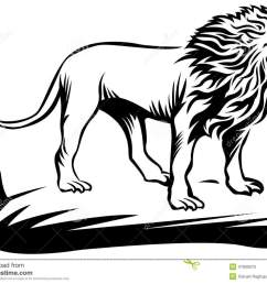 roaring lion line art work with isolated white background [ 1300 x 1029 Pixel ]