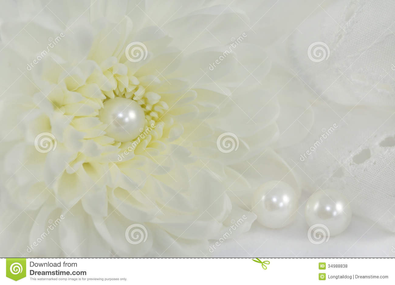 Romantic Abstract Background Stock Photo  Image of abstract flower 34988838