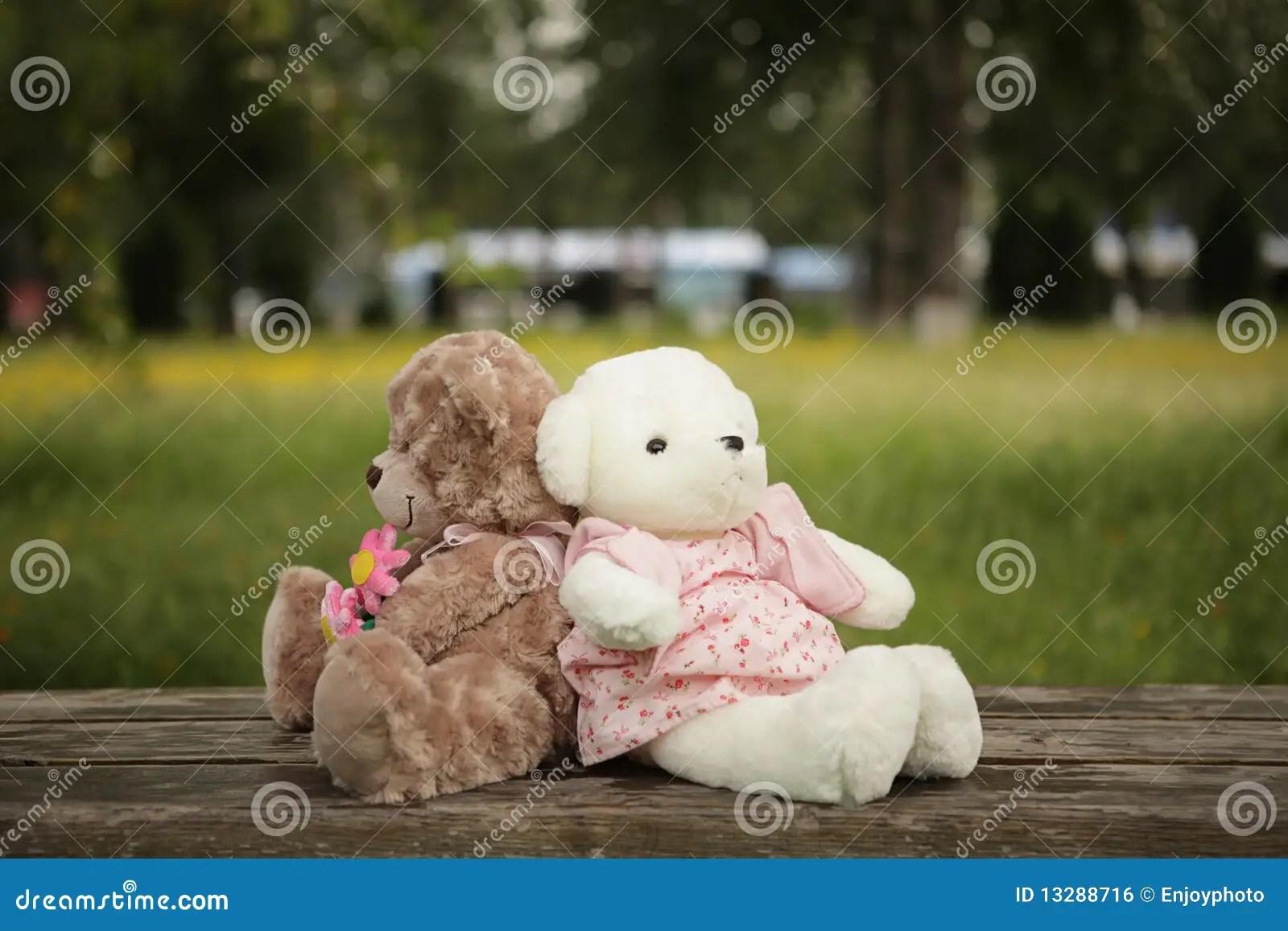 Free Cute Couple Wallpaper Romantic Teddy Bears Stock Photo Image Of Couple