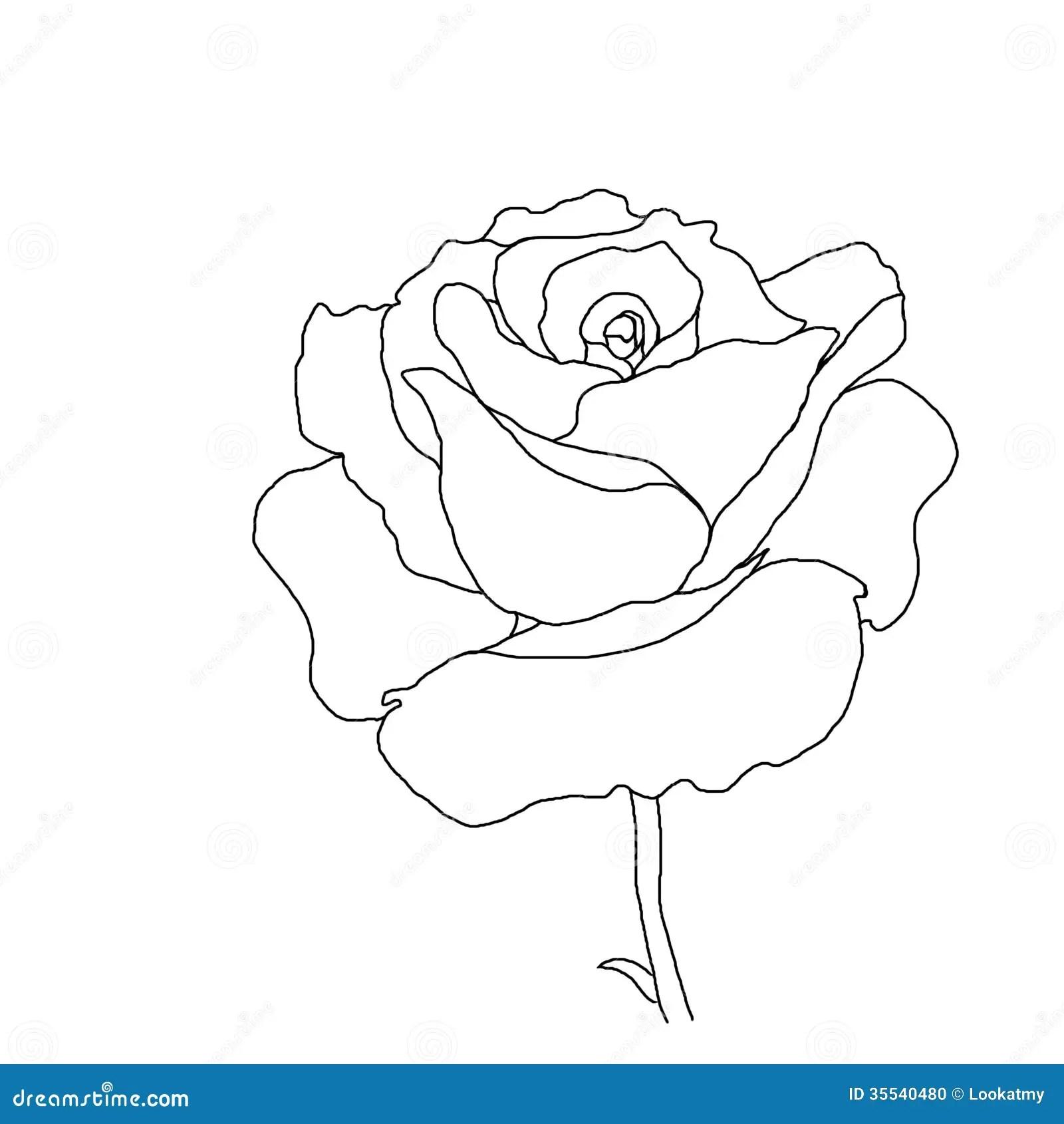 knumathise: Rose Clip Art Outline Images