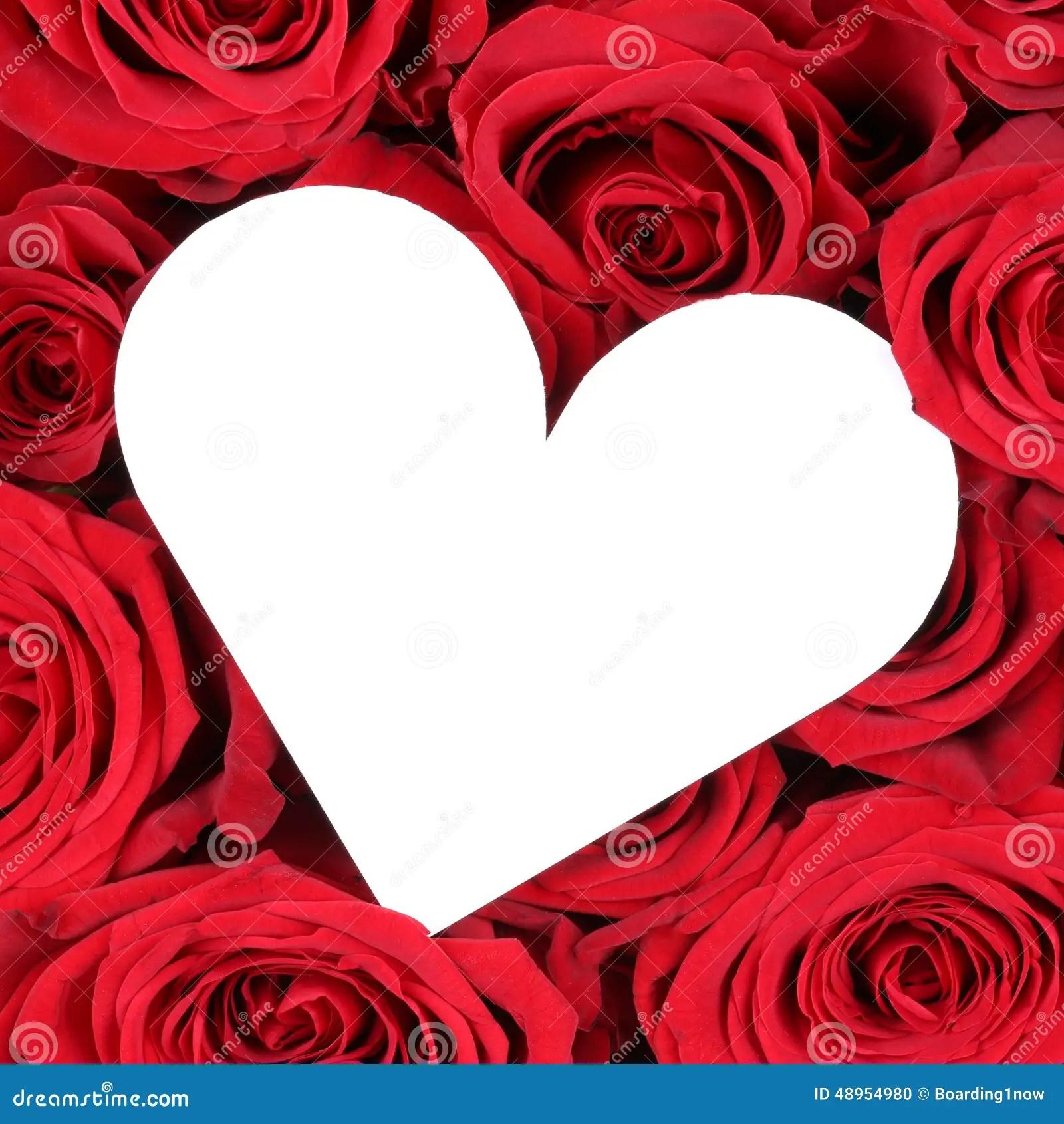 Rote Rosen Mit Herzen Als Liebe Auf Valentinstag Oder