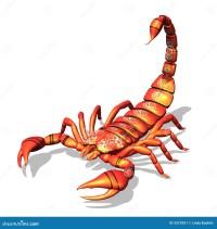 Roter Skorpion Stockbild - Bild: 2519251